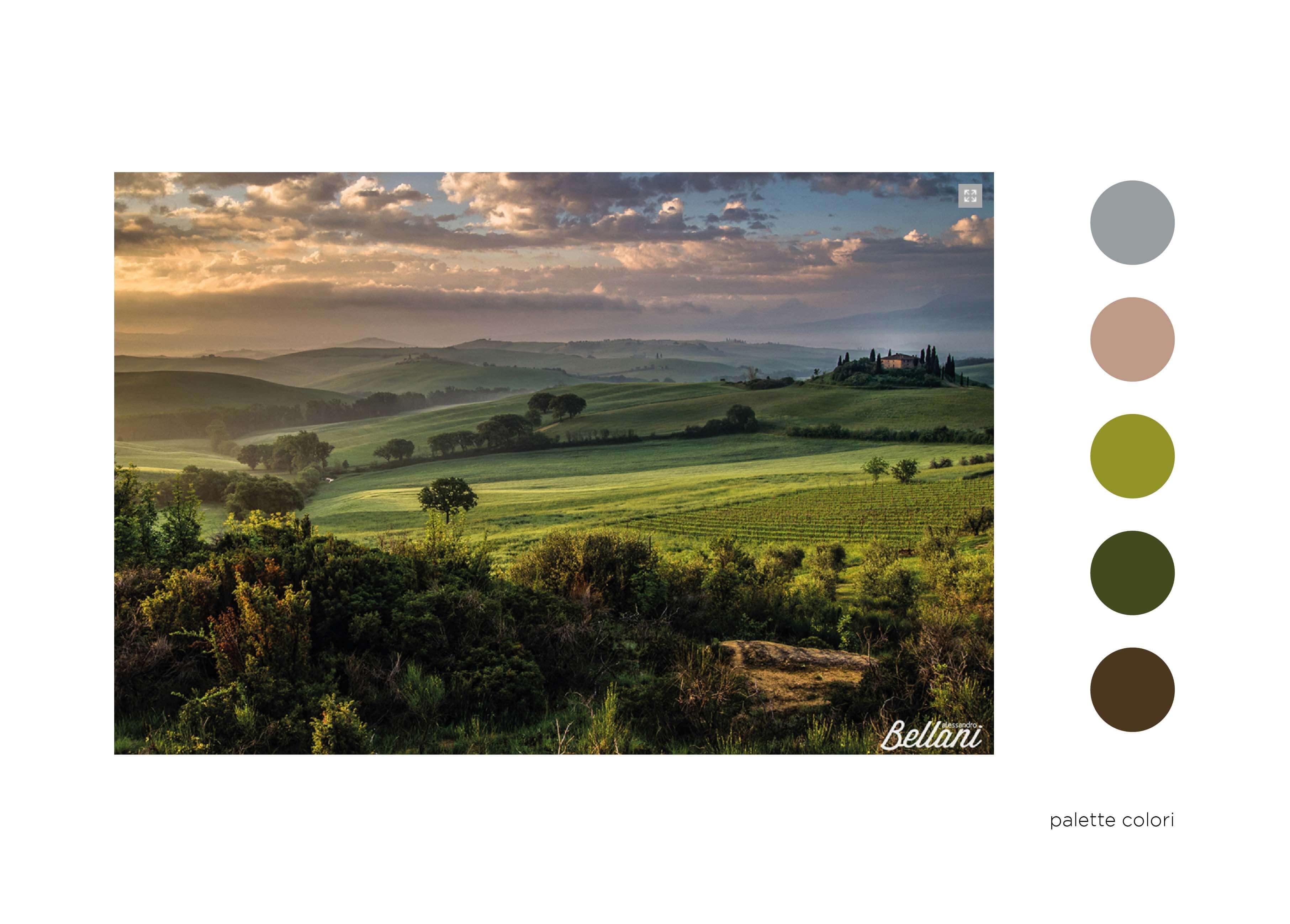 elisa_macchi_immagine_coordinata_ab_palette_colori
